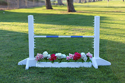 Kids Schooling Standards with Flower Box